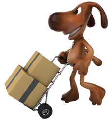 dog-delivery.png